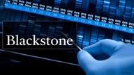 Blackstone strikes $4.7 billion deal with Ancestry