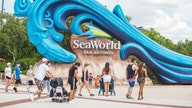 SeaWorld attendance declines, revenue plunges 95% amid coronavirus pandemic