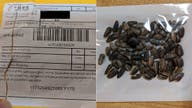 US Postal Service is urged to stop delivering mysterious seeds