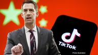 Cassidy, Cotton blast Biden for allowing Chinese-owned TikTok to be founding sponsor of US Cyber Games