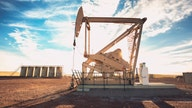 Higher US gas inventories result in price drop in early trading Thursday: report