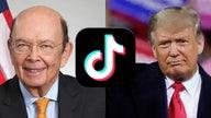 Trump admin to 'vigorously defend' TikTok executive order after judge blocks ban: Commerce Dept.