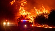 Largest California wildfire threatens marijuana growing area