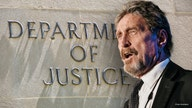 Tech entrepreneur John McAfee charged with fraud, money laundering in cryptocurrency schemes