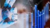 Coronavirus tops concerns for CEOs in 2021: survey