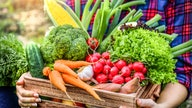 USDA authorizes $500 million in latest food box program