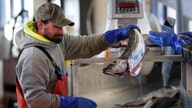 Here's why seafood prices are soaring this summer