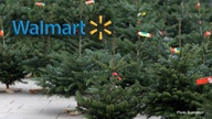 Walmart delivering live Christmas trees, installing lights amid coronavirus in a different holiday season