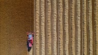 US crop prices are rising, and China is buying