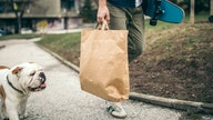 NJ governor signs strict single-use paper, plastic bag ban into law
