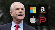 Navarro rips Google, Amazon, Apple: Parler attack 'chilling'