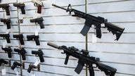 Gun sales slow down in February, show 10% jump year-over-year