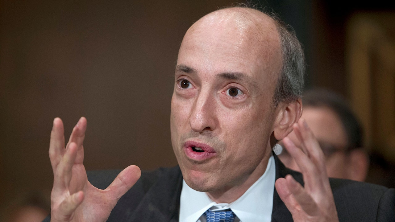 SEC's Gary Gensler eyes crypto and climate change with confirmation official