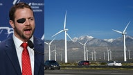 Crenshaw on wind turbines: Texas learned 'too many renewable energy lessons from California'