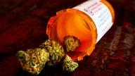 Ex-congressman and Air Force vet Denver Riggleman joins push for medical marijuana for veterans with PTSD