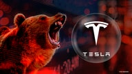Tesla's bitcoin buy both 'friend and foe' as shares enter bear market