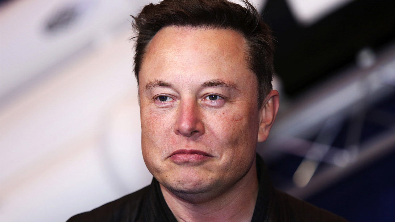 Tesla fights court ruling ordering CEO Musk to delete tweet  image