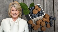Martha Stewart says CBD for pets will be a $10B industry in 2 years