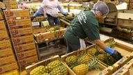 Fruit producer Dole targets $2.1 billion valuation in IPO