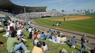Minor league baseball looks for Congress to step up to the plate on COVID relief