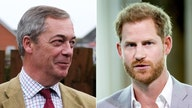 Prince Harry upcoming tell-all receives 'high level' of 'disregard' in UK: Farage