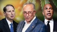 Senate Democrats unveil plan for federal marijuana legalization