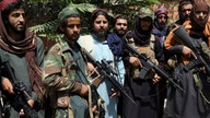 Taliban wants to help fight climate change, terrorism, despite links to executions, oppression: reports