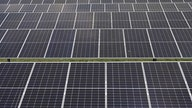 Two US companies seek continued tariffs on imported solar panels