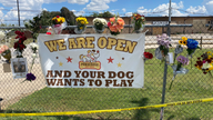 Texas fire at pet-boarding facility kills 75 dogs