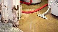 How to clean up a flooded basement, treat mold, according to experts