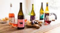 Patagonia joins 'natural wine' and drink trend with big name distilleries