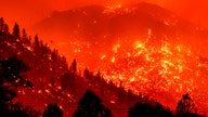 2021 Western wildfires: the economic toll