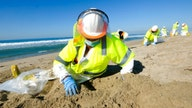 Oil spill in California: Workers took 3 hours to shut off pipeline after alarm sounded, report