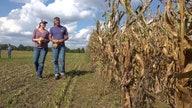 Summer weather still impacting farmers as fall harvest begins