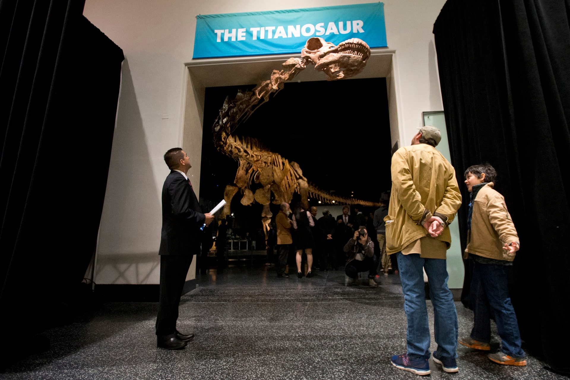 Experts Proclaim Newly Named Patagotitan Dinosaur Species The Largest Ever Discovered