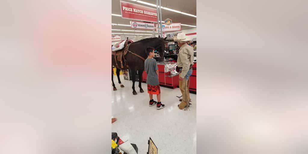 b372a827446b Oklahoma man brings horse into feed and tack store, goes viral | Fox News