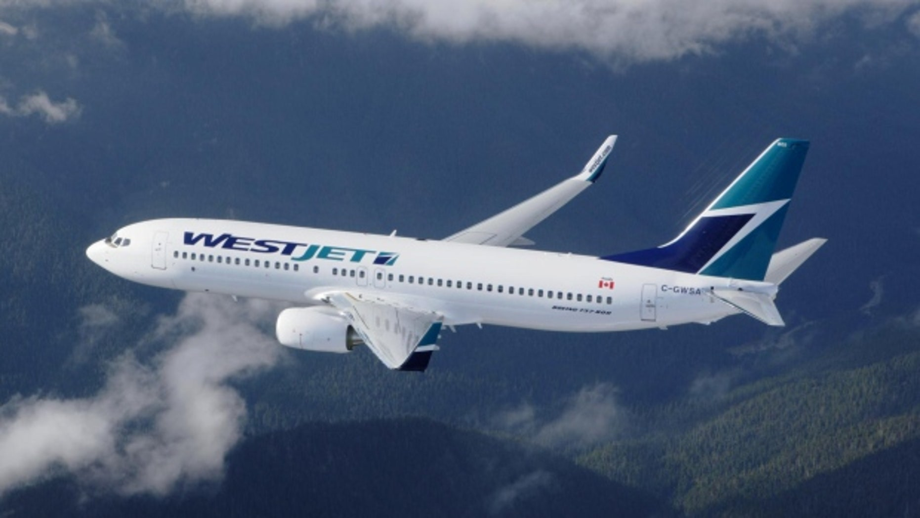 WestJet объявил в прошлом месяце, что его политика маски нулевой терпимости вступила в силу 1 сентября. (AP) (AP)