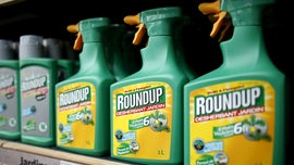 Roundup weed killer substantial factor in California man's cancer, jury rules