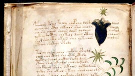 Voynich manuscript mystery continues as experts question whether 'alien' code has really been cracked