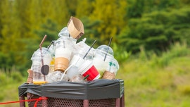 The plastic we 'recycle' is actually horrible for the environment