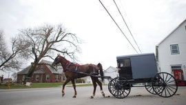 Pennsylvania clinic launches drive-through coronavirus testing for Amish, Mennonites on horses and buggies