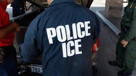 ICE announces hundreds of migrants arrested in raid operations