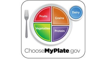 """""""My Plate"""" Embraces Healthy Eating"""