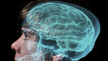 Brain imaging a promising method for predicting future behavior, study finds