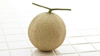 Pair of Japanese melons fetch $15,730 at auction
