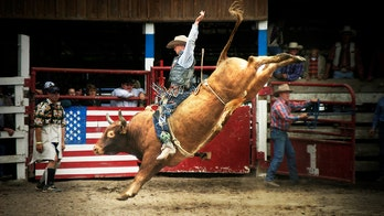 All American cowboy: 8 must see rodeos this summer