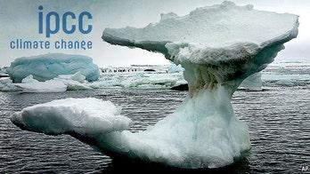 UN climate change expert reveals bias in global warming report