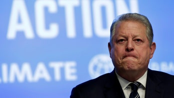 Texas town's environmental narcissism makes Al Gore happy while sticking its citizens with the bill