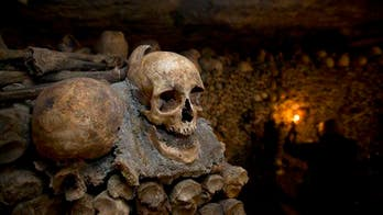 Black Death and other ancient diseases could be re-awakened by climate change, professor warns