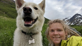 Husky saves hiker after 700-foot fall in Alaska; owner says he's saved someone before